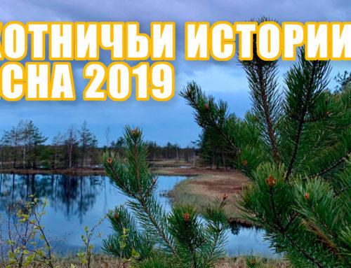 Охотничьи истории: весна 2019